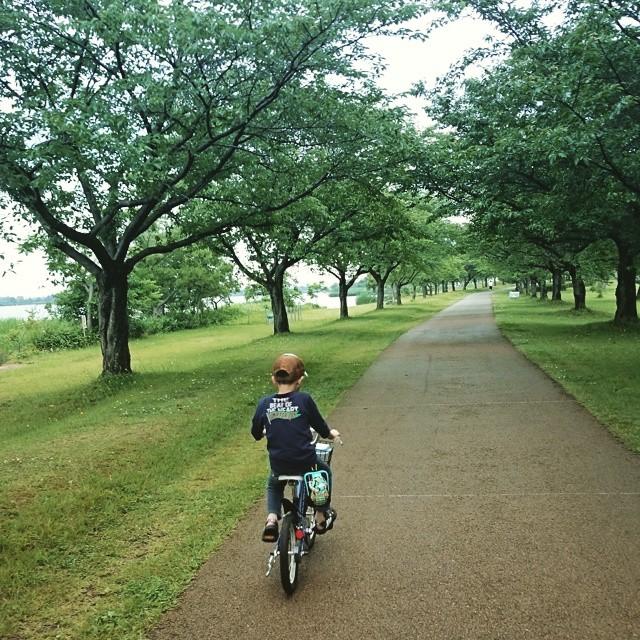 気持ちよくサイクリングしていたのに、土砂降りに遭遇!休憩所にて雨宿り中・・・やむのか?