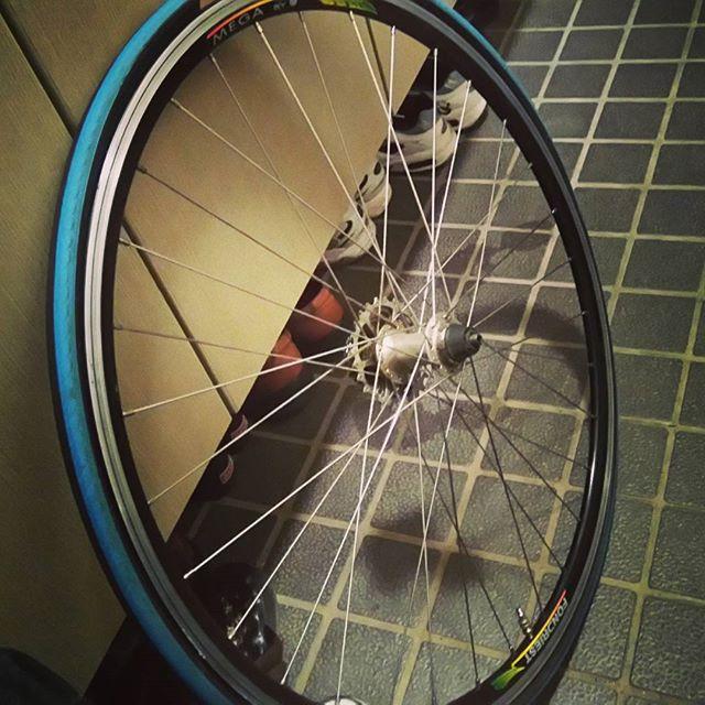 春に備え、ロードバイクのチューブを交換。はめるのに手こずり、二時間かかりました(^^;