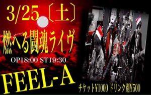 2017/3/25(土) FEEL-A、ライブします!